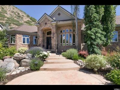 Alpine Single Family Home For Sale: 1472 E Bald Mountain Cir