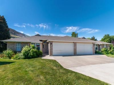 Brigham City Single Family Home Under Contract: 771 S 725 E
