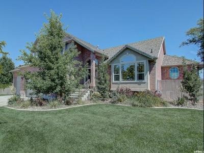 Weber County Single Family Home For Sale: 4072 W 4125 S