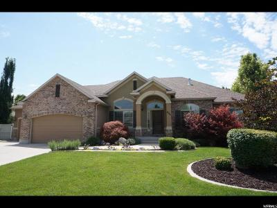 Kaysville Single Family Home Under Contract: 925 W Mill Shadow Dr