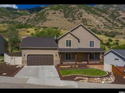 Provo Single Family Home For Sale: 2131 S Alaska Ave