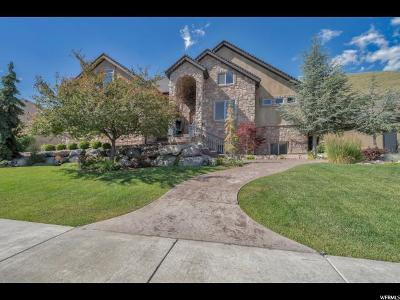 Herriman Single Family Home For Sale: 14656 S Rose Summit Dr W