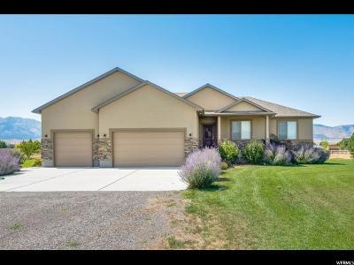 Grantsville UT Single Family Home For Sale: $424,500
