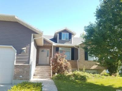Wellsville Single Family Home For Sale: 133 E 400 N