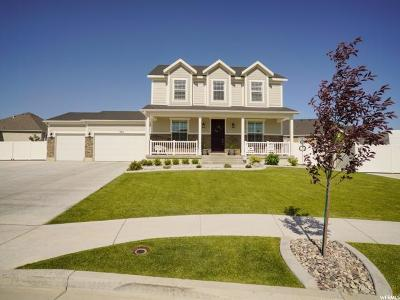 West Jordan Single Family Home For Sale: 9414 S Michal Robert Ln