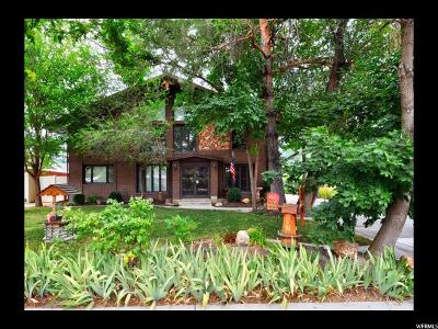 Sandy Single Family Home For Sale: 9295 S Jean Dr