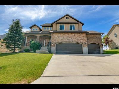 Highland Single Family Home For Sale: 4031 W Park Cir