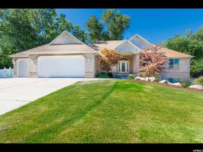 Ogden Single Family Home Under Contract: 1769 Shadow Valley Dr