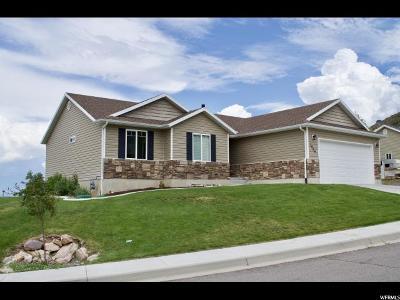 Santaquin Single Family Home Under Contract: 1009 E Bing St
