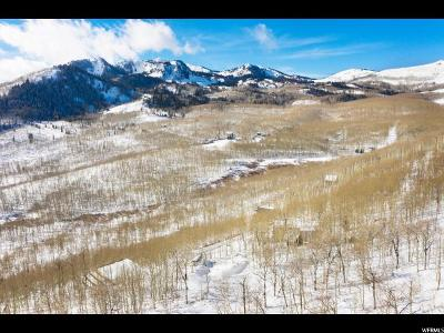Wasatch County Single Family Home For Sale: 5234 N Grandview