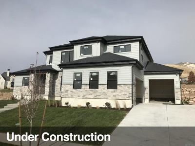 Lehi Single Family Home For Sale: 4522 N Ridge View Way W #19