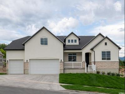 Orem Single Family Home Under Contract: 485 S 1045 W #14