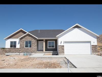 Hyrum Single Family Home For Sale: 1461 E 340 S