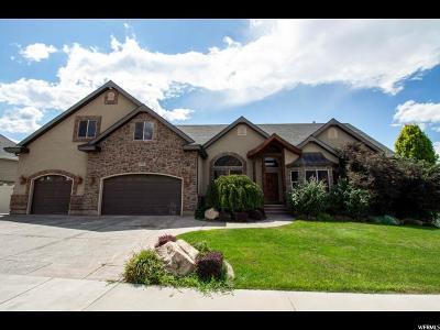 Salem Single Family Home For Sale: 424 E 960 S