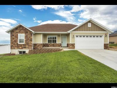 Elk Ridge Single Family Home Under Contract: 1486 N Fox Xing