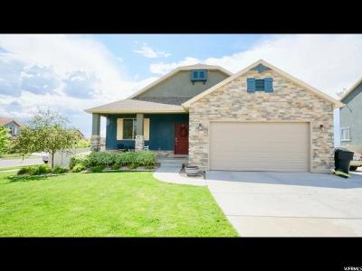 Salem Single Family Home For Sale: 265 E Salem Park Cir