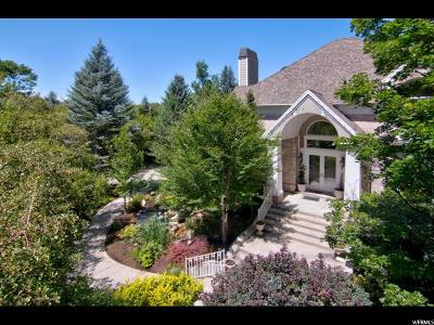 Sandy Single Family Home For Sale: 95 Lone Hollow Dr