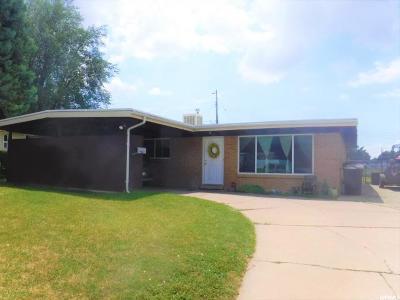 Davis County Single Family Home Backup: 243 W 1425 N
