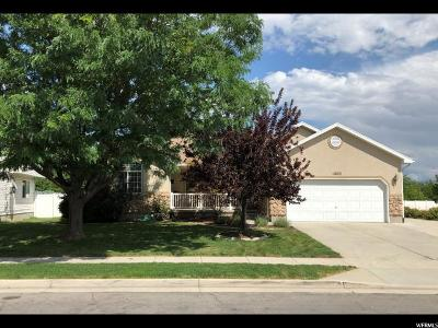 Herriman Single Family Home Under Contract: 11823 S Ticaboo Mine Rd