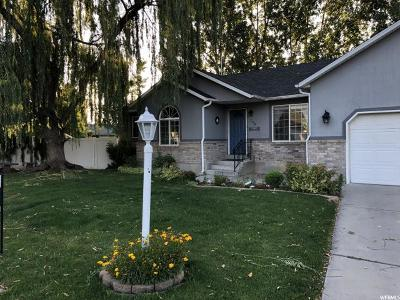 Salem Single Family Home Under Contract: 706 S 320 E
