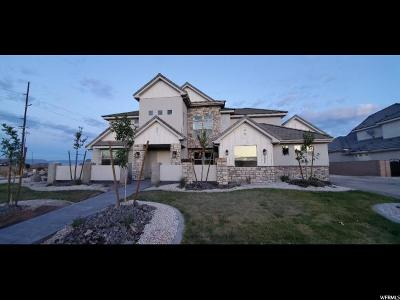 St. George Single Family Home For Sale: 3064 S Popular Ln #2