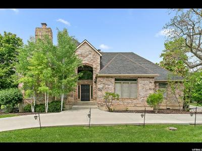 Provo, Orem Single Family Home For Sale: 4125 N Canyon Rd