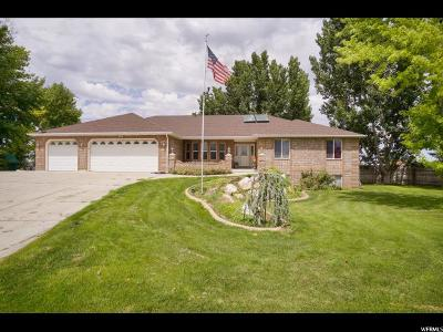 Weber County Single Family Home For Sale: 4103 S 3750 W