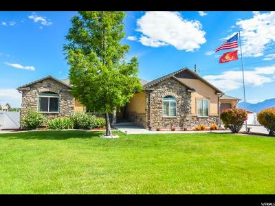 Bluffdale Single Family Home Under Contract: 2672 W Clydesdale Cir S