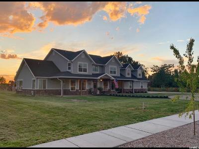 Weber County Single Family Home For Sale: 5025 S 4700 W