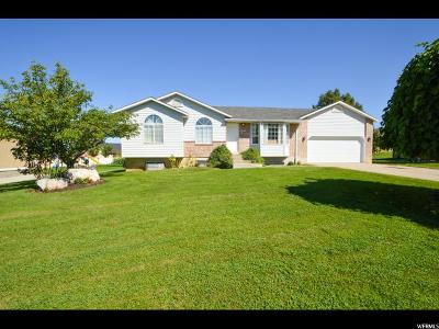 Fruit Heights Single Family Home Backup: 1255 E Country Rd N