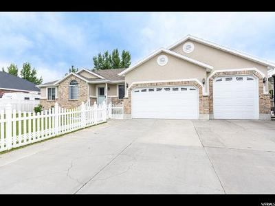 Farr West Single Family Home For Sale: 2689 W Remuda Rd.