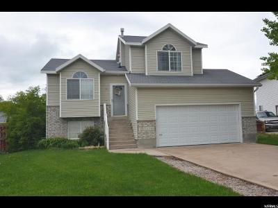 Hyrum Single Family Home Under Contract: 13 S Manitoban