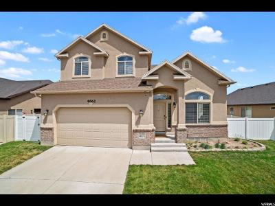 Riverton Single Family Home For Sale: 4662 W Geronimo Rd