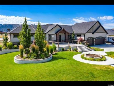 Draper Single Family Home For Sale: 551 W Cephus Rd S