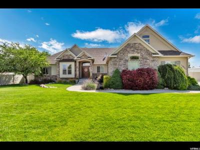South Jordan Single Family Home Under Contract: 10641 S Willow Valley Rd W