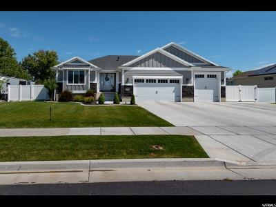 Davis County Single Family Home Under Contract: 1372 W 2535 N