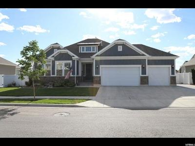 Lehi Single Family Home For Sale: 2919 Meadow Vw