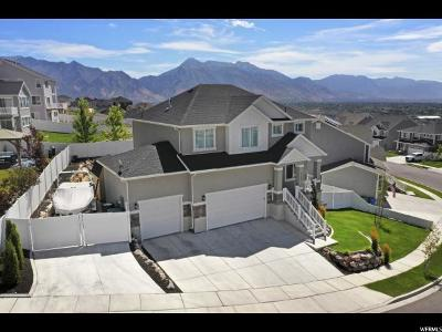 Lehi Single Family Home For Sale: 4142 N 900 W #535