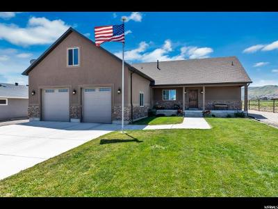 Herriman Single Family Home For Sale: 6483 W 13400 S