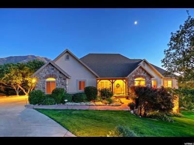 Springville Single Family Home Under Contract: 941 S 2500 E
