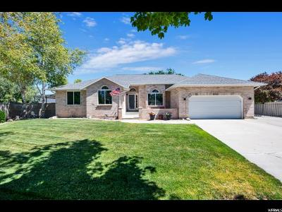 South Jordan Single Family Home For Sale: 9517 S Sweet Blossom Dr W