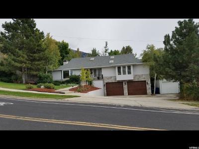 Sandy Single Family Home For Sale: 3572 Danish Rd
