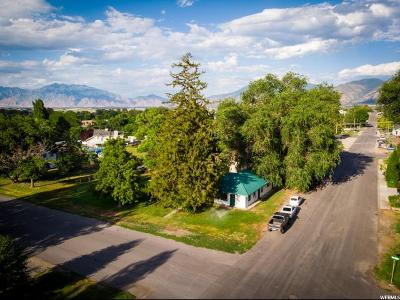 Payson Single Family Home For Sale: 314 N 100 E