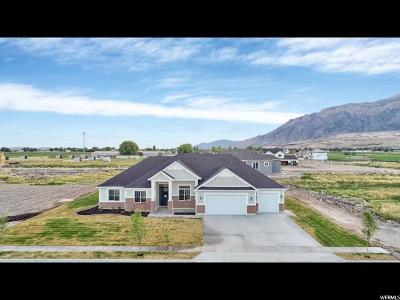 Farr West Single Family Home Under Contract: 2626 W 2900 N
