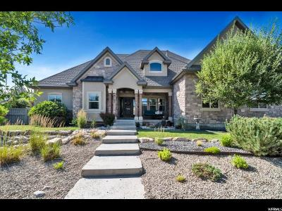 Eagle Mountain Single Family Home For Sale: 9122 N Mount Airey Dr