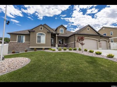 West Jordan Single Family Home For Sale: 3859 W Farrell Ln S