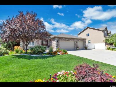 West Jordan Single Family Home For Sale: 1253 W Trimble Ln S