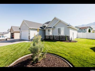 Single Family Home For Sale: 2618 N Meadow Ln