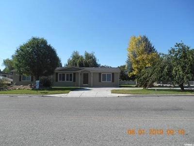 Carbon, Emery County Single Family Home For Sale: 390 E Molen Rd