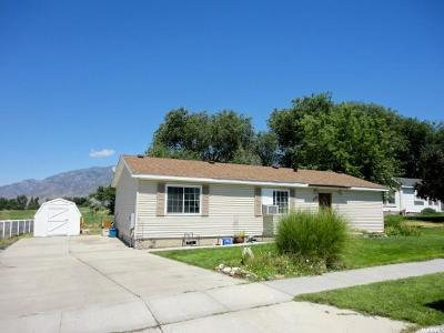 Brigham City Single Family Home For Sale: 736 W 325 N